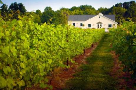 545xNxnew-jersey-wineries-hopewell-valley.jpg.pagespeed.ic.SsE-MvyyCd