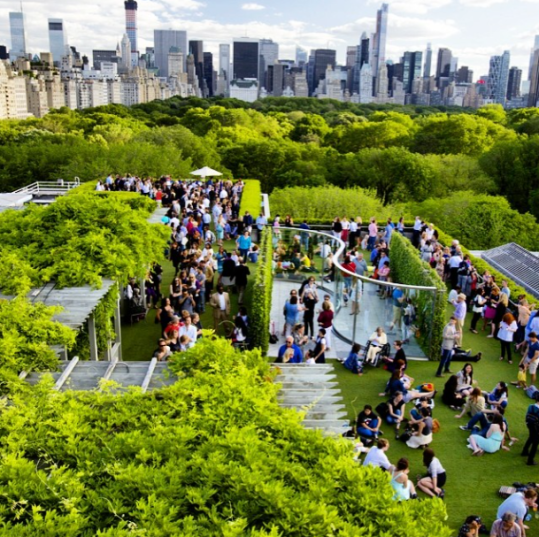 Rooftop Garden at The Met